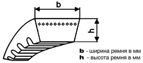 remen-variatora